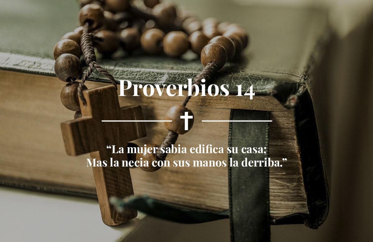 Proverbios 14