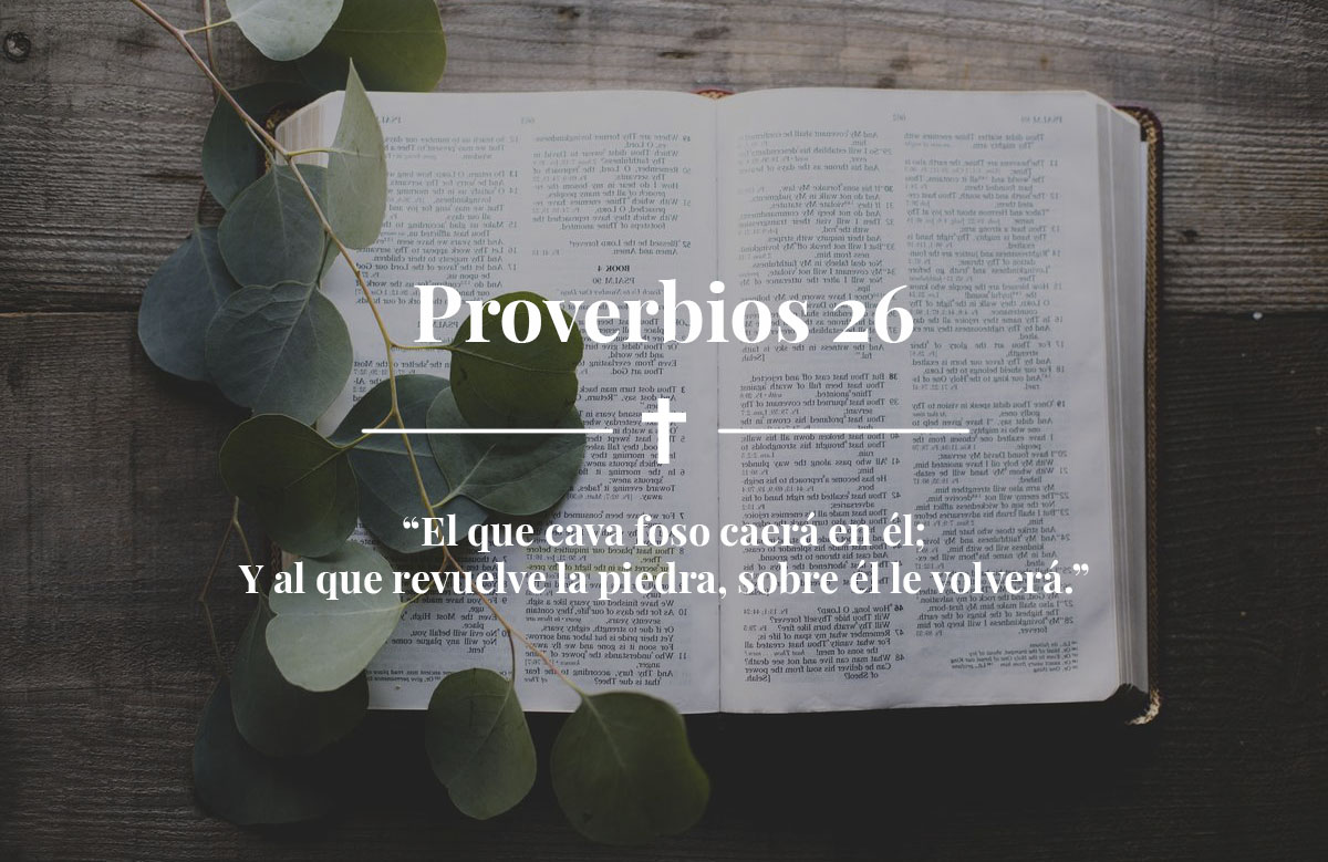 Proverbios 26